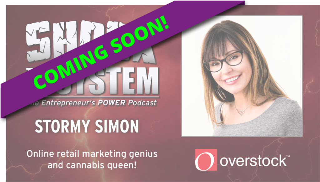 Stormy Simon - From Secretary to CEO of Overstock.com on Shock to the System - The Entrepreneur's Podcast with Coach Dan Gordon